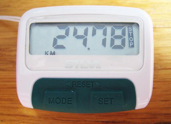 08619-stegraknare