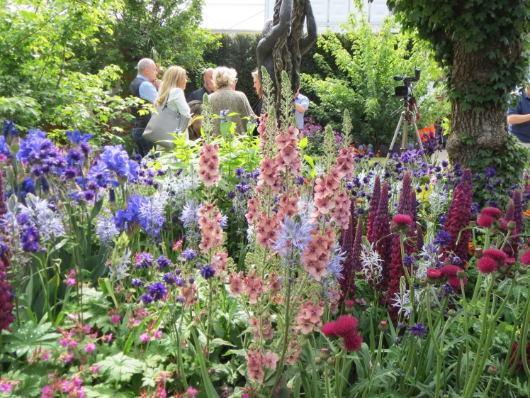 London2015-Chelsea-flowershow-tradgard2