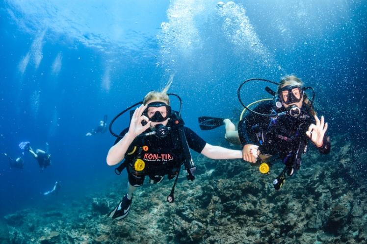 f92f9-dykning