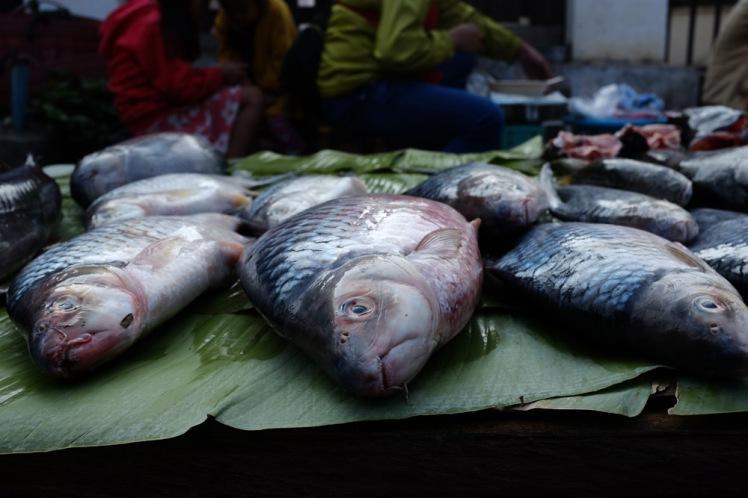 luangprabang-marknad4