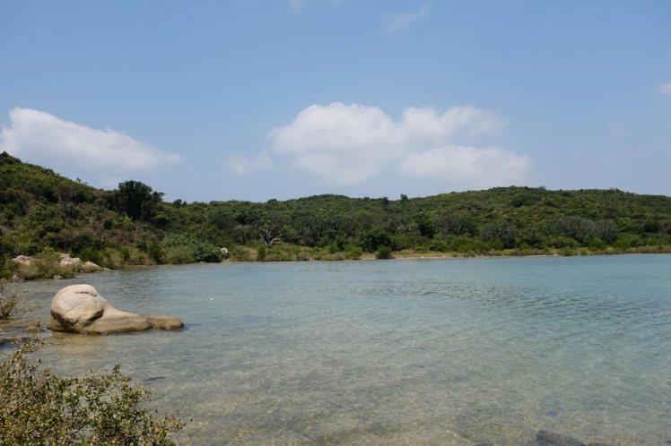whale-island-djungeltur7