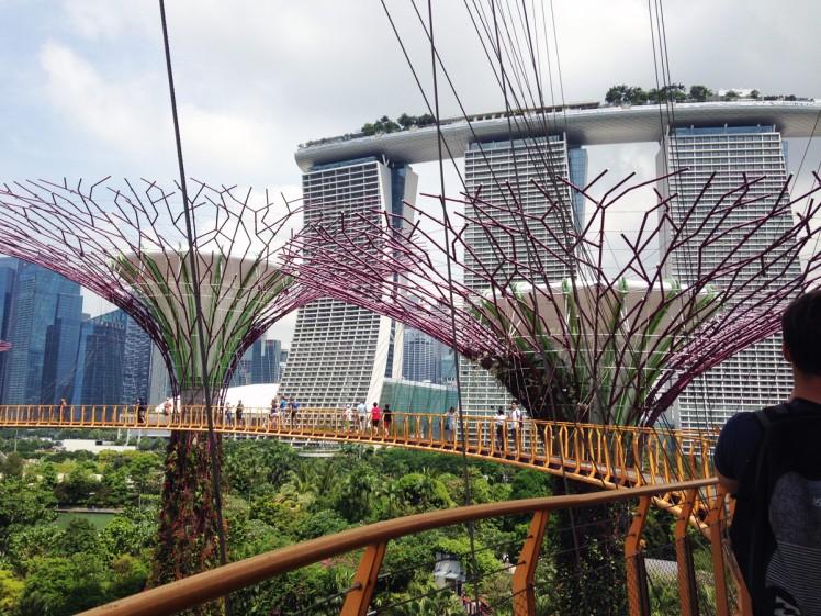 Singapore_Gardens-trad-2