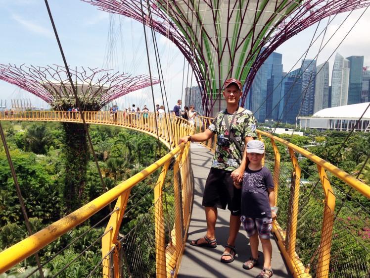 Singapore_Gardens-trad-3