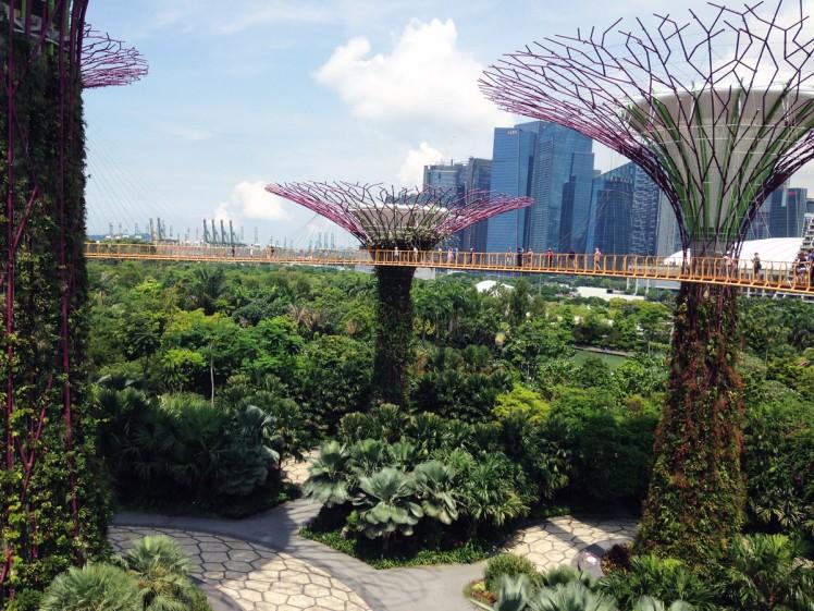 Singapore_Gardens-trad-4