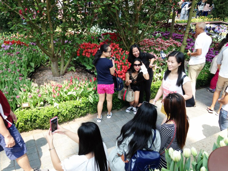 Singapore_Gardens_blomsterustallning-5-selfie