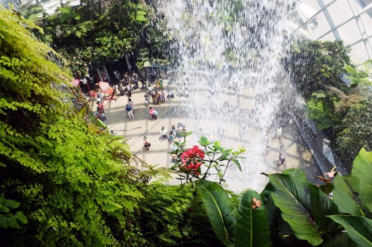 Singapore_Gardens_cloudforrest-2