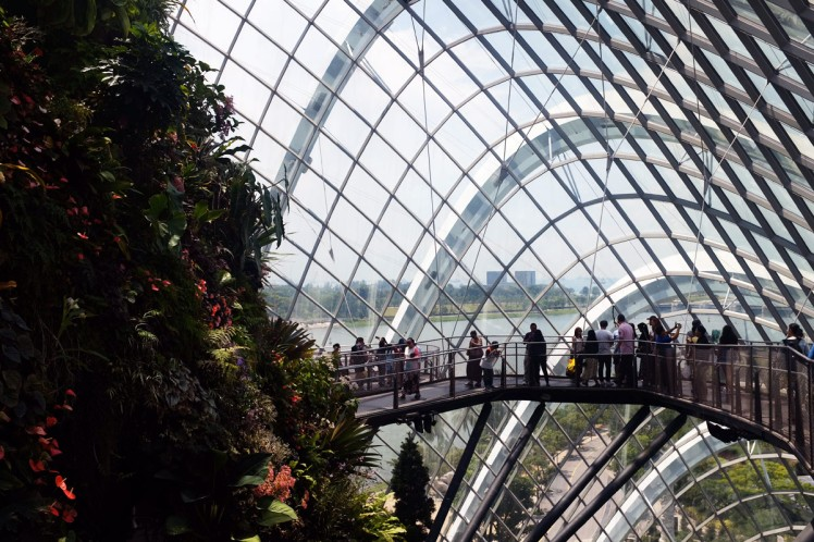 Singapore_Gardens_cloudforrest-3