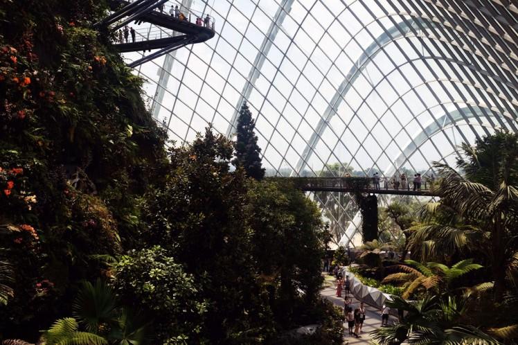 Singapore_Gardens_cloudforrest-4