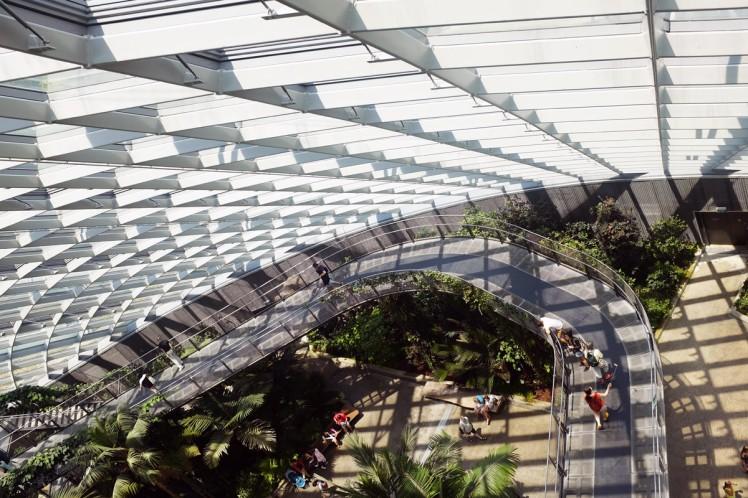 Singapore_Gardens_cloudforrest-6