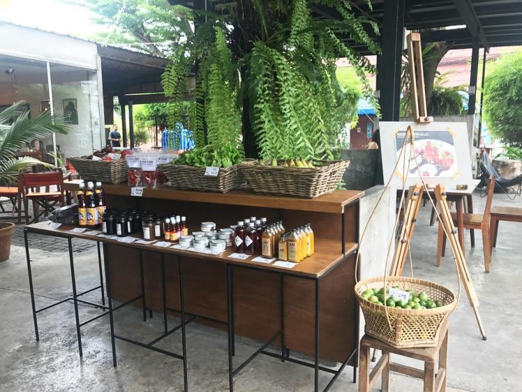 Bangkok-Ari-eko