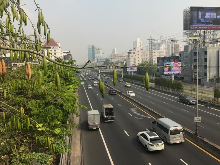 bangkok-gron-vag11