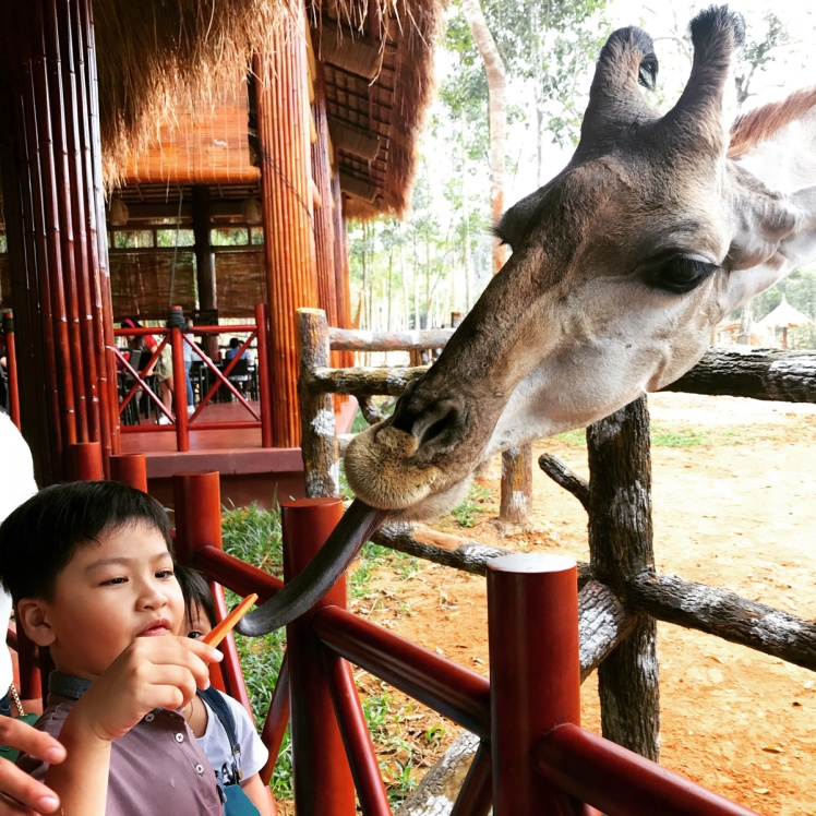 PhuQuoc2018-zoo1