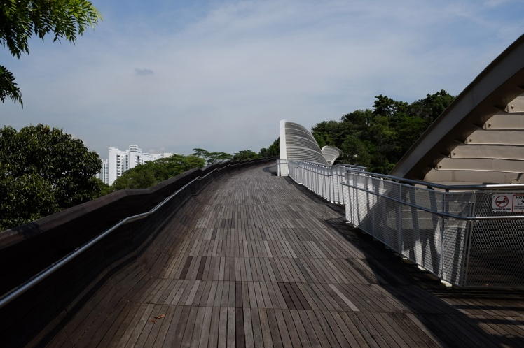 Singpore-Hendersen-bridge6