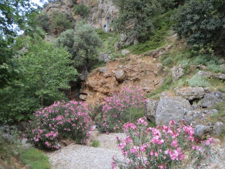 Kreta-Therisso4