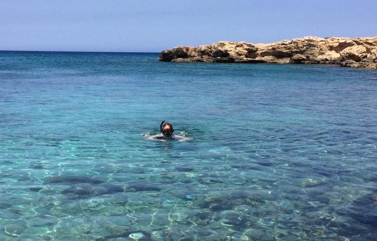 cypern2016-figtreebay-viken4