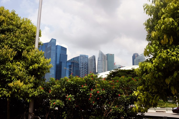 Singapore-stadsvy-1