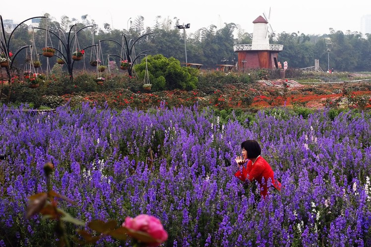 Hanoi-blomsterpark-10