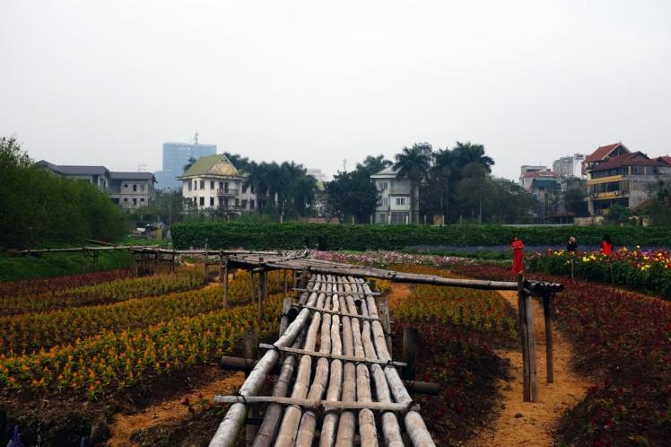 Hanoi-blomsterpark-14