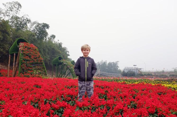 Hanoi-blomsterpark-6