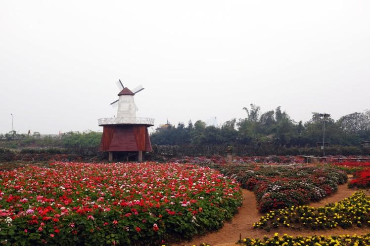 Hanoi-blomsterpark-7